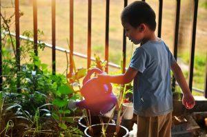niño cuidado jardin